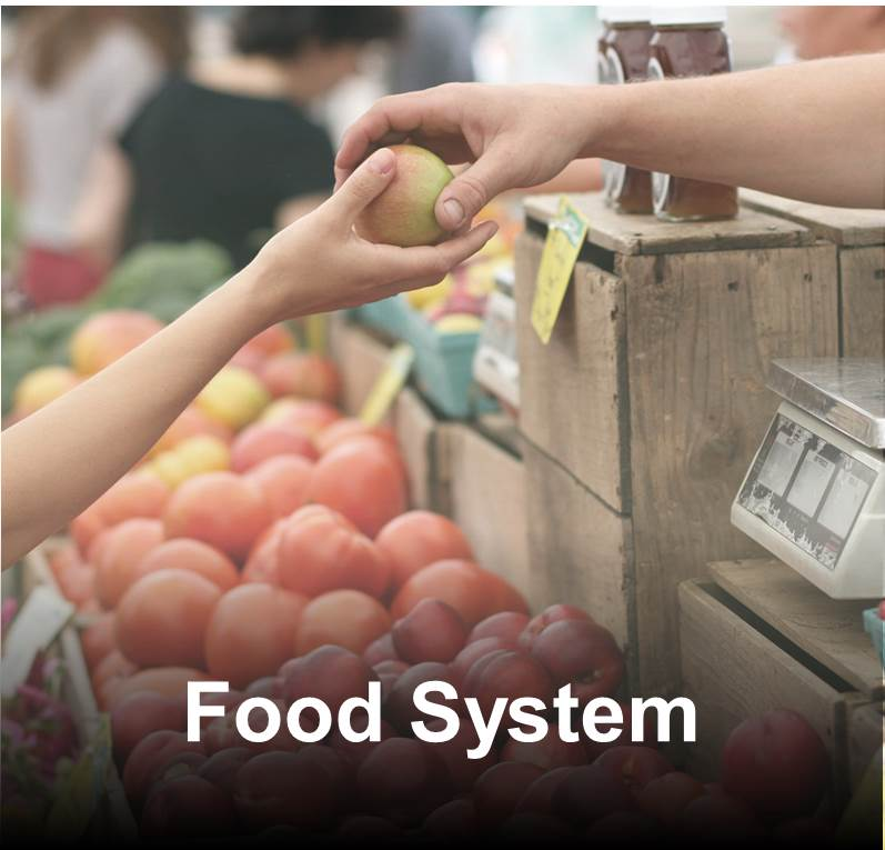 Pasco County Food System Pasco County Fl Official Website
