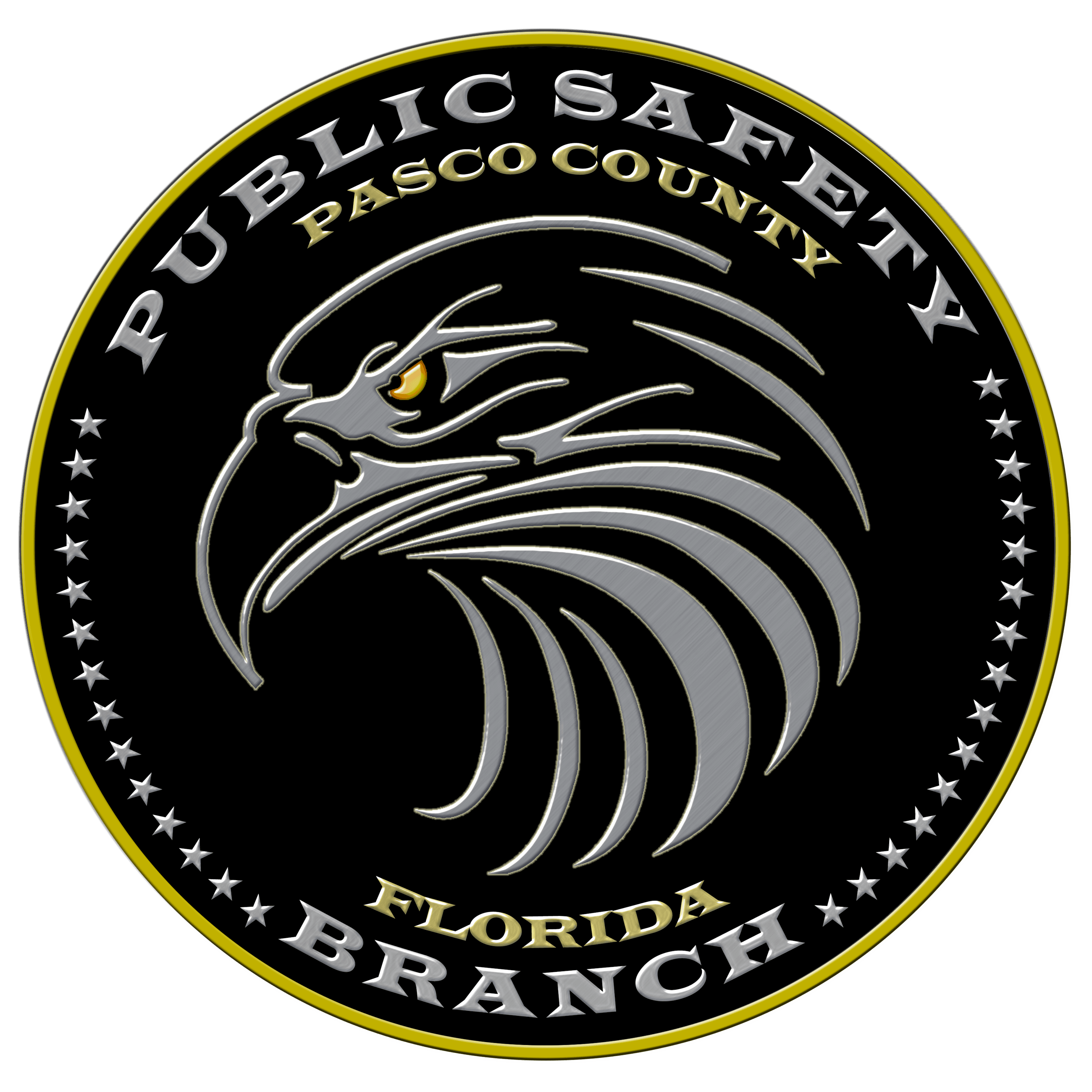Logo - Public Safety - black transparent.png