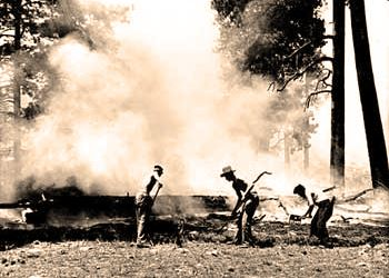 Wildfire - National Park Service Historic Photograph Collection circa 1930