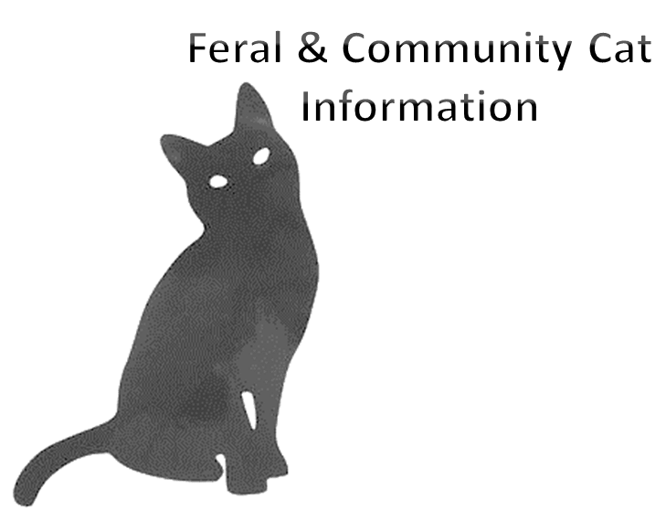 Feral and Community Cat Information