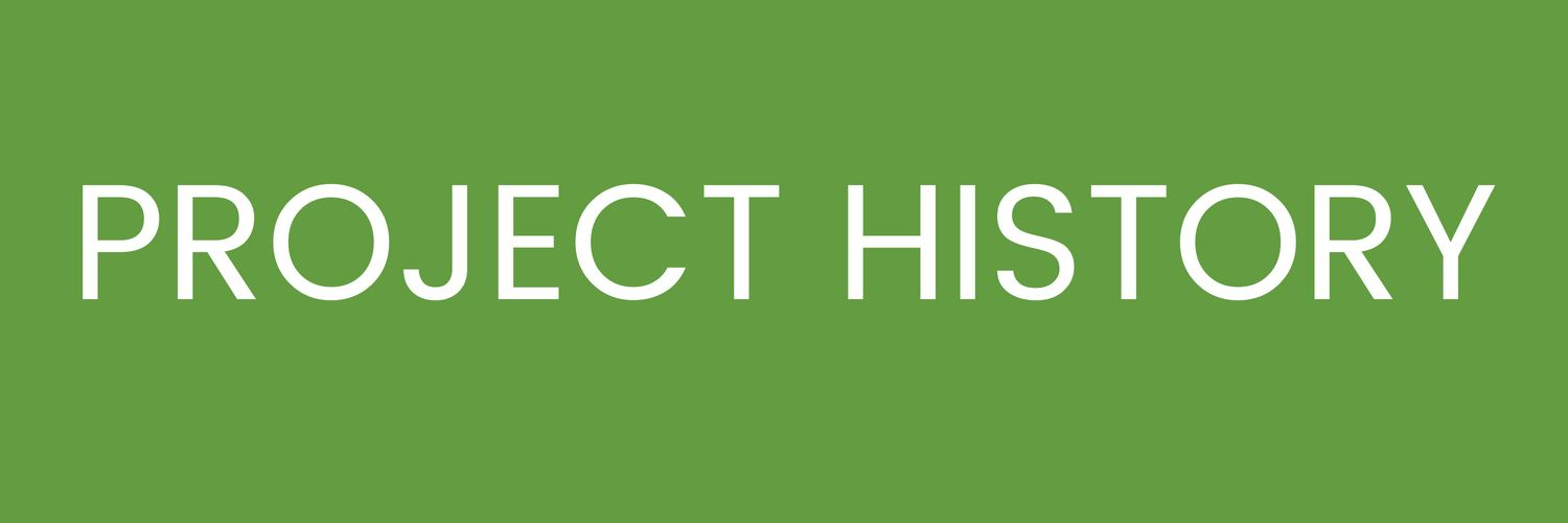 Project History Button