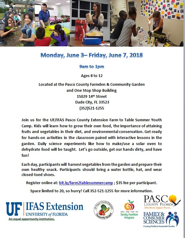 UF IFAS Pasco Extension One Stop Shop Stallings Dade City Summer Camp 06-2019 1.jpg