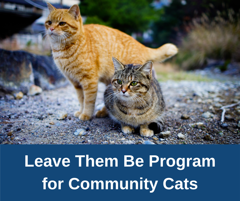 Leave Them Be Program Information