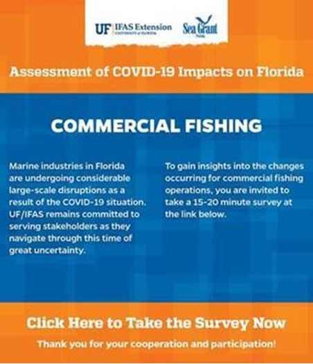 UF Survey Commercial Fishing Flyer