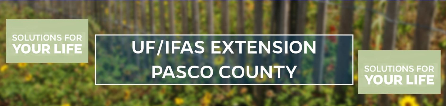 UF IFAS Pasco Extension Title Banner