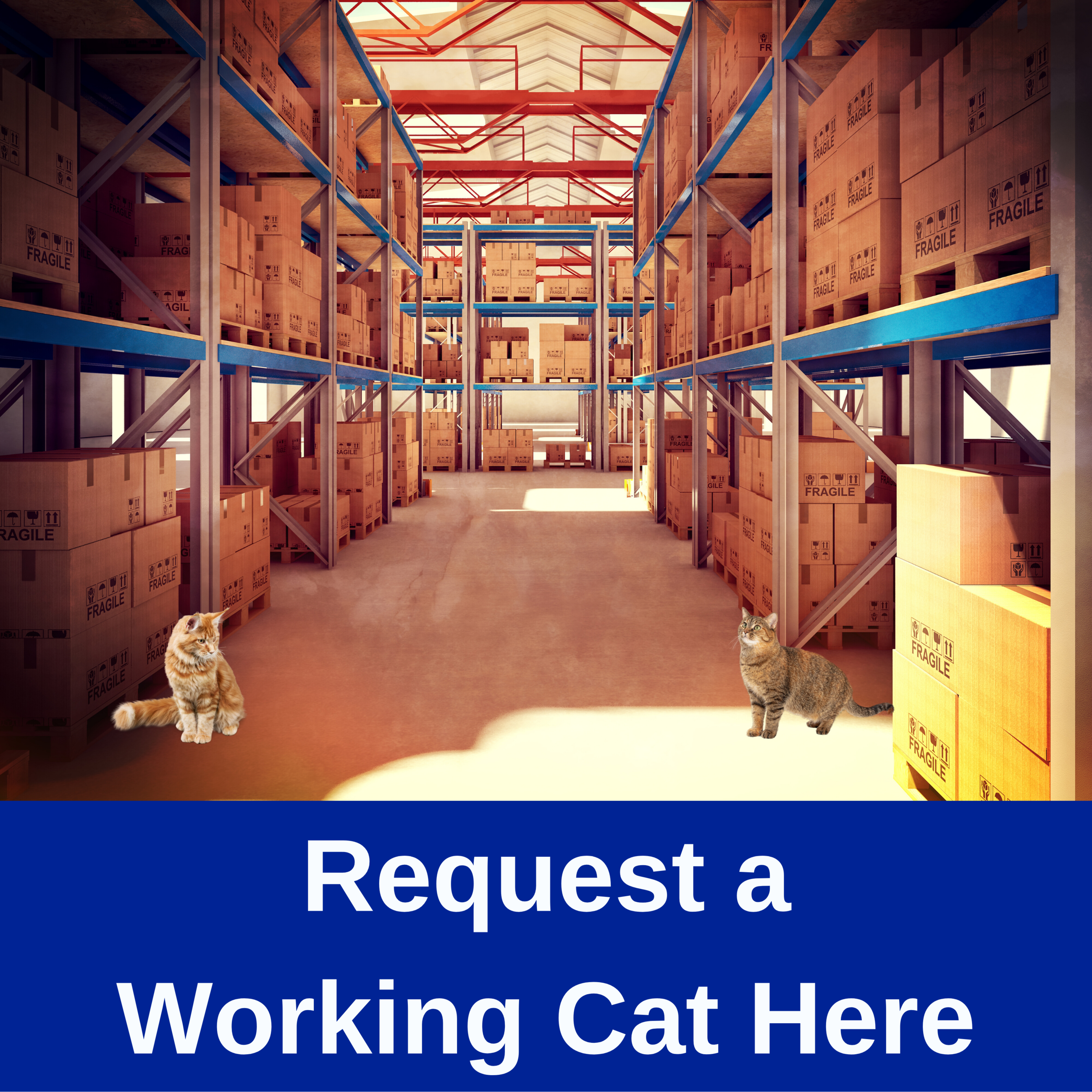 Click here to request a working cat adoption