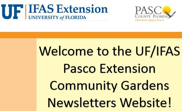 Welcome to the Community Gardens Program Newsletters Site Flyer
