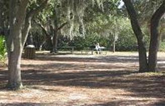 Reading in the shade at Anclote River web
