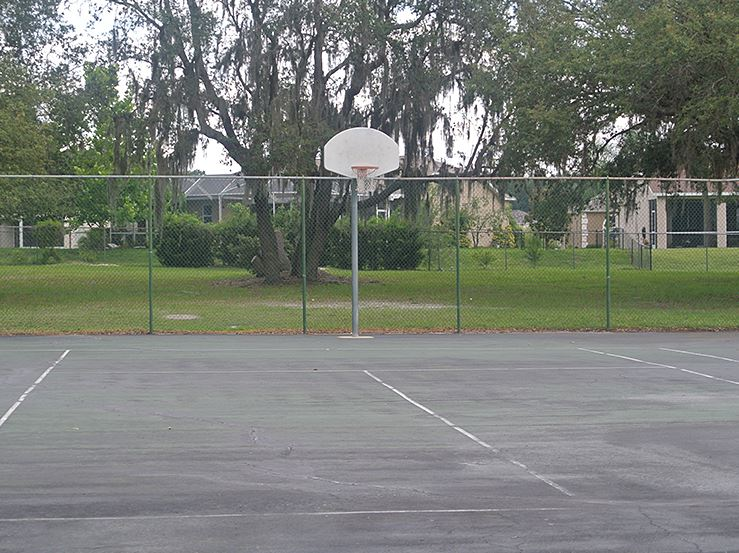 Turtle Lakes Basketball Court