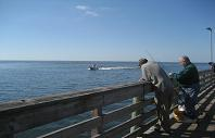 Fishing on west side of Pier