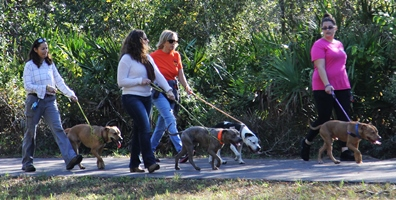 Make it a Dog Day Afternoon with Pasco Park Walks