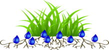 Turf - shallow roots.png
