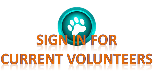 Sign in for established volunteers