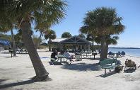 Picnic Area-Rees.JPG