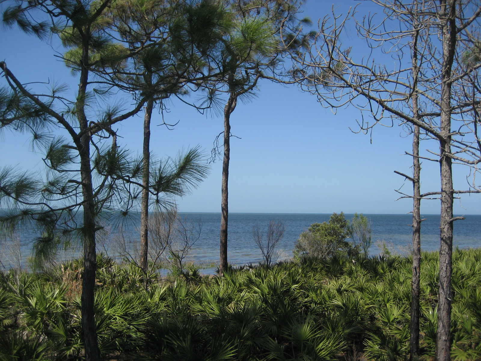 View of Gulf of Mexico