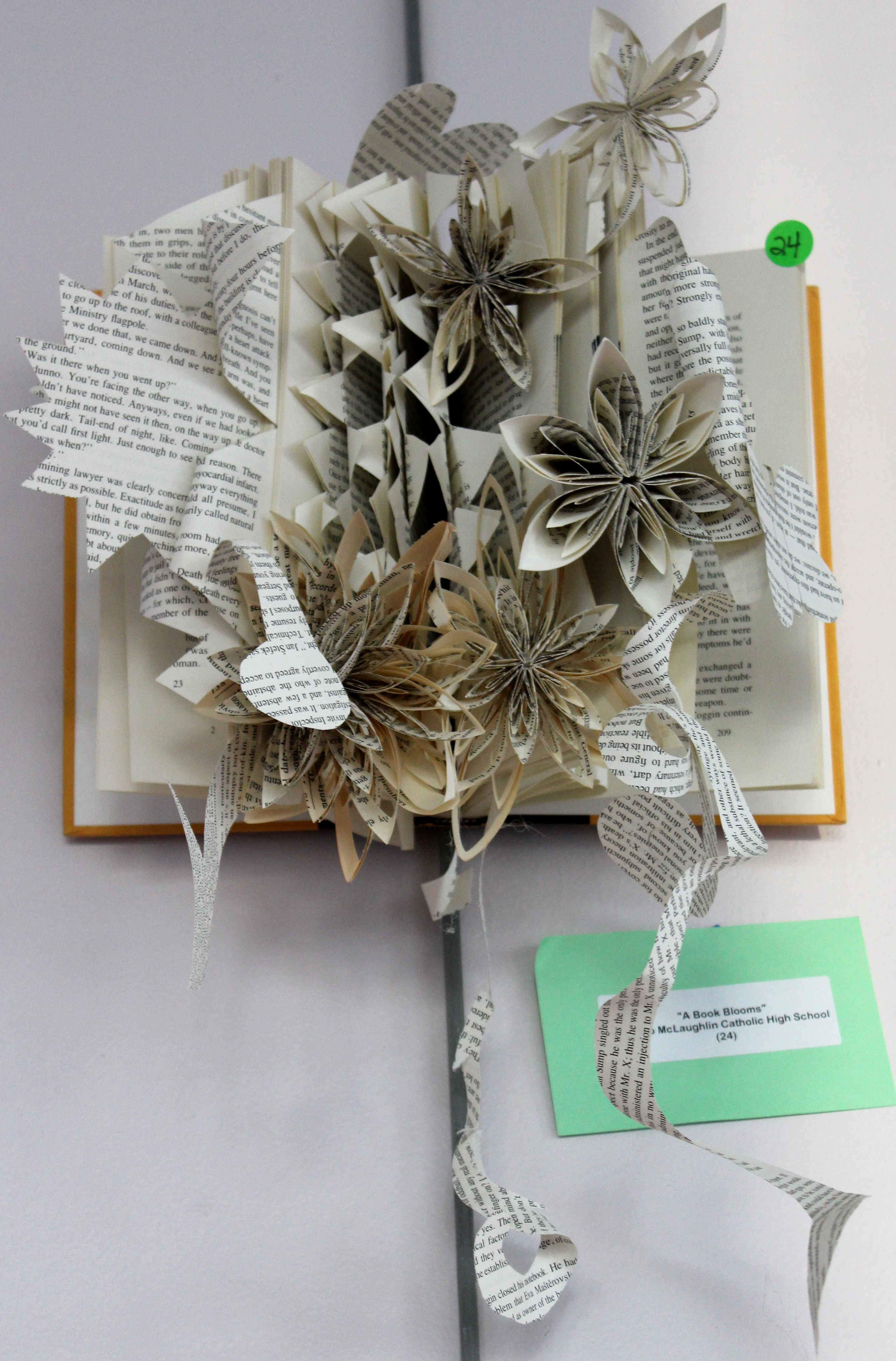 3rd place - A Book Blooms - Copy.jpg